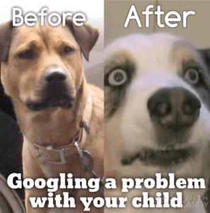dog-before-after