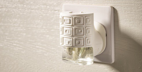 10 Innovative And Diy Ways To Make Your House Smell Good Naturally