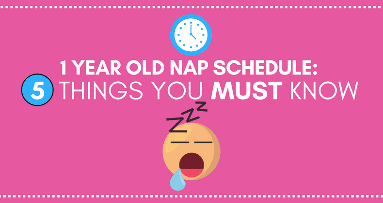 1 Year Old Nap Schedule 5 Things You Must Know